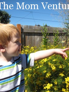 Baby pointing at flowers