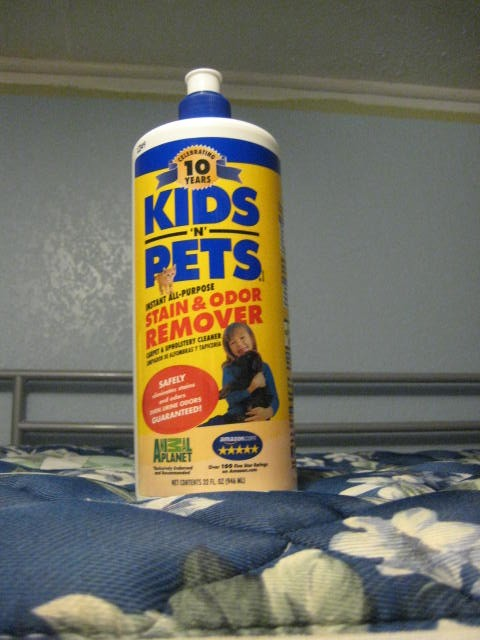 Kids n Pets Odor and Stain remover Review